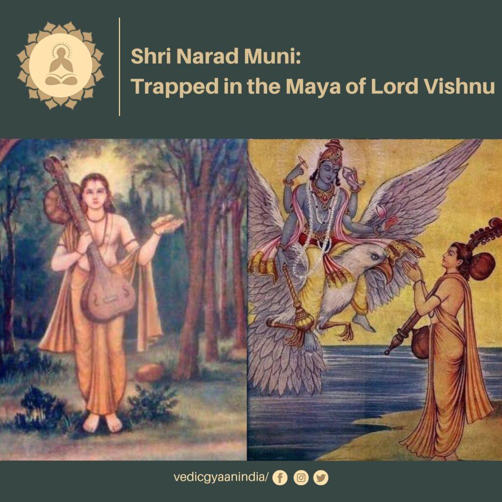 Shri-narad-muni-trapped-in-the-maya-of-lord-vishnu-vedic-gyaan-india