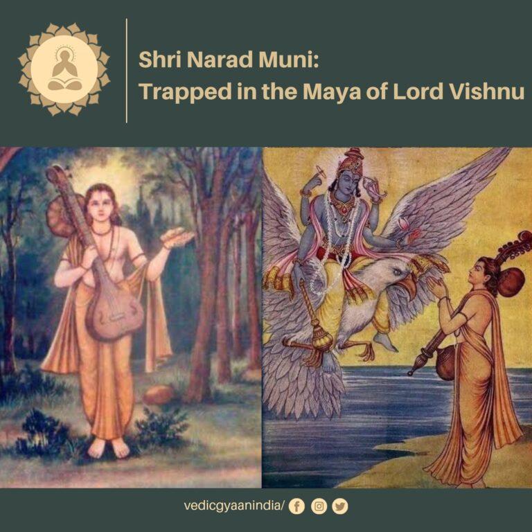 Shri Narada Muni: Trapped in the Maya of Lord Vishnu (8th Avatar of Lord Vishnu)