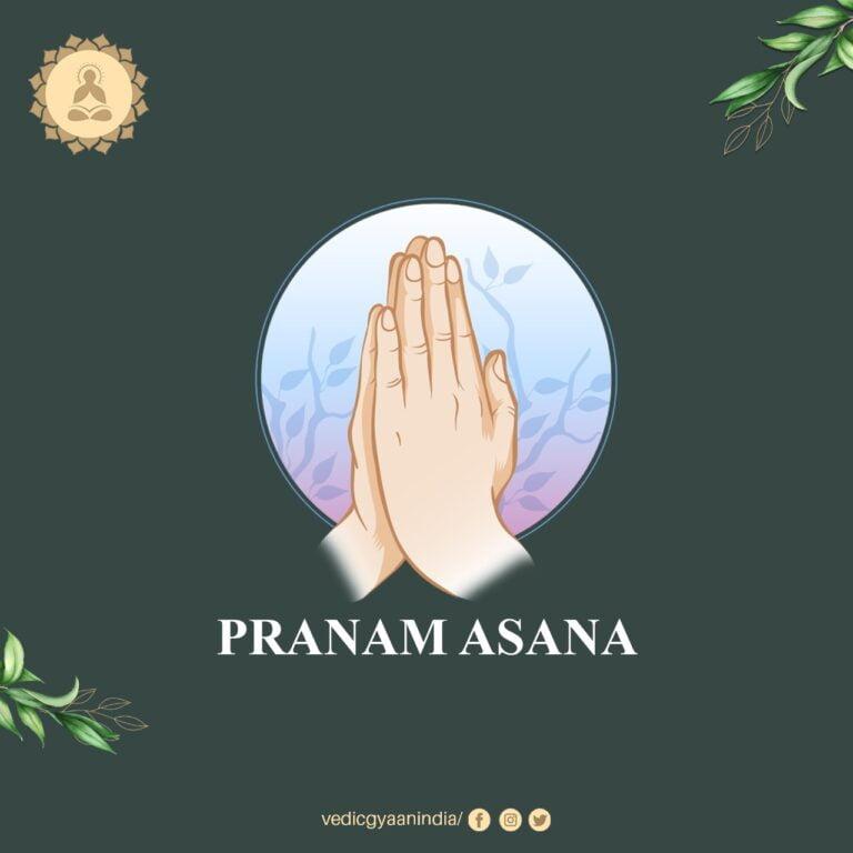 Pranam Asana: Amazing Traditional Yoga for Cyber World