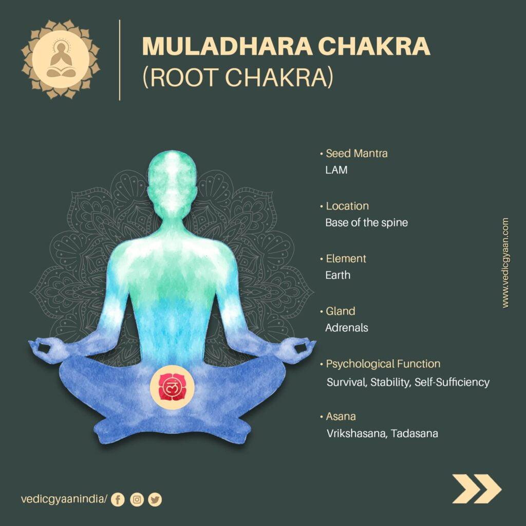 Muladhara-chakra-root-chakra
